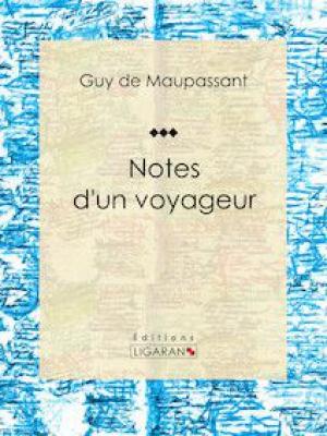 Notes d'un voyageur